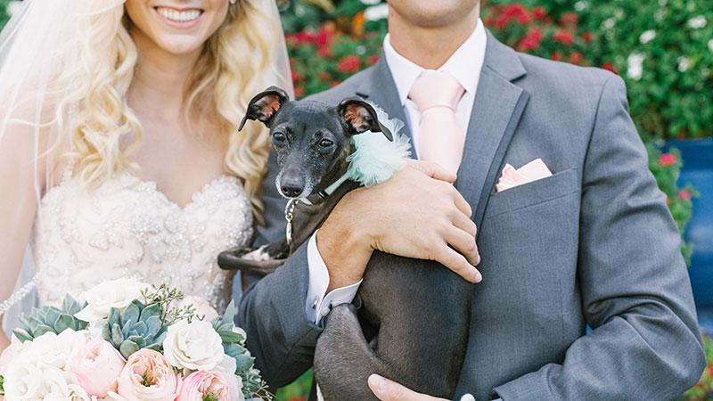 postcard-inn-wedding-photographer-17